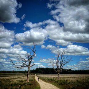 Gravelty Series: Summer Ride #1