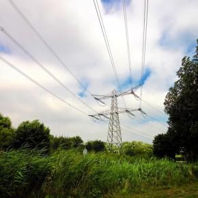 Biesbosch in 15 seconden